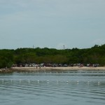 Camp at John Pennekamp Coral Reef State Park for an Undersea Adventure